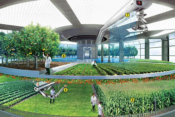vertical farm int