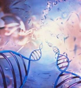 Nutrition affects at least 80% of gene makeup & expression