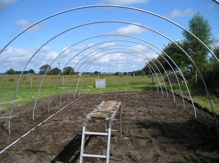 ireland greenhouse 2