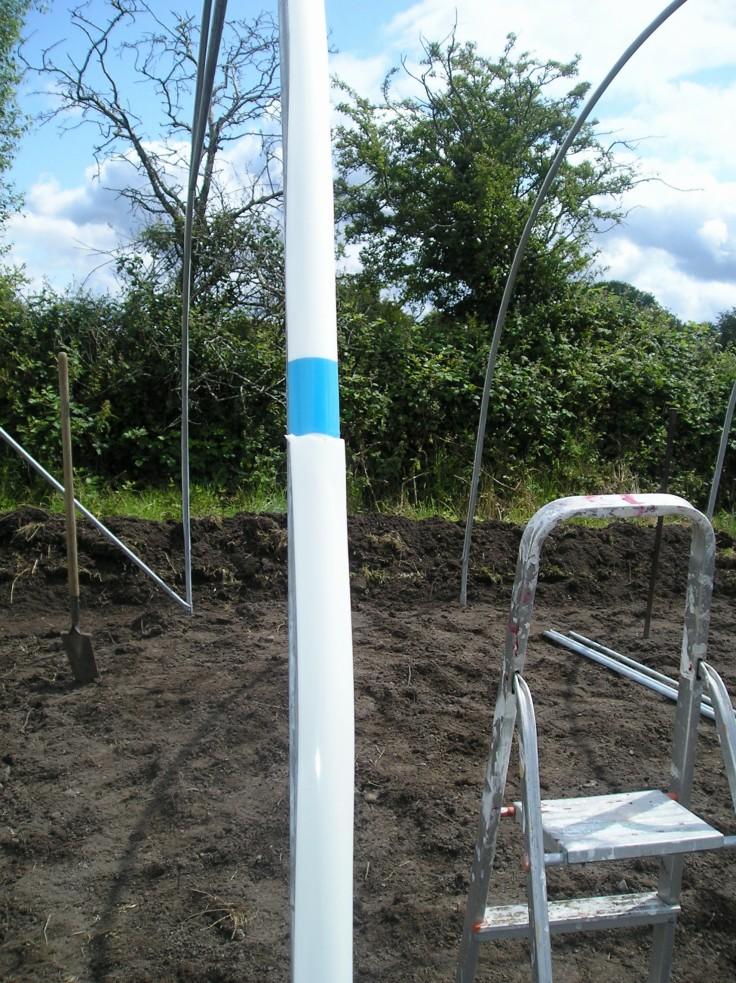ireland greenhouse 4