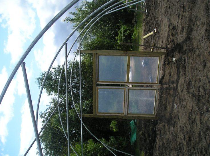 ireland greenhouse 6