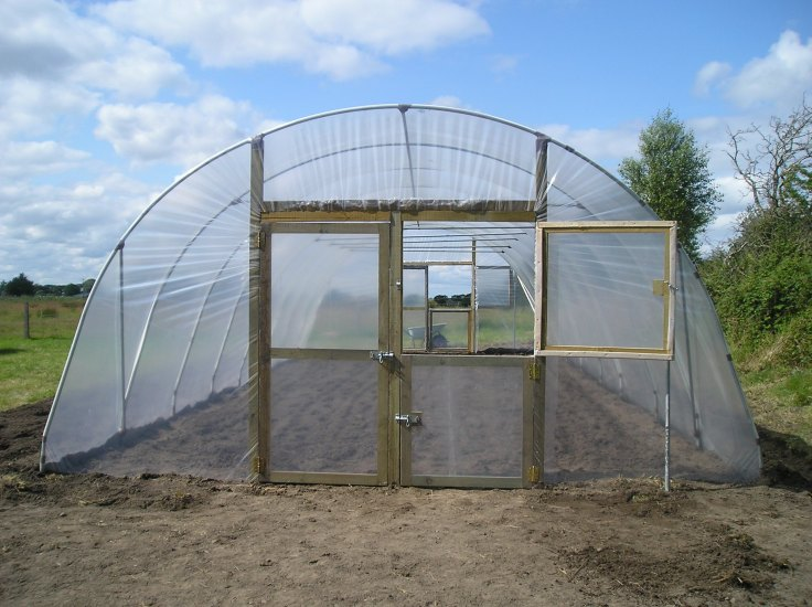 ireland greenhouse 8