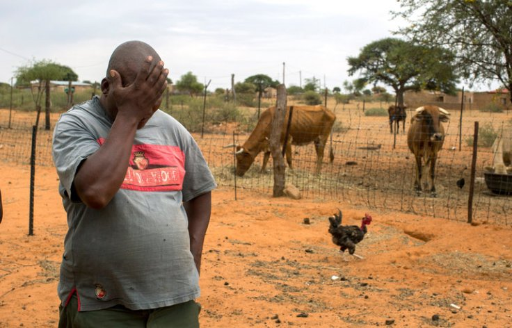 arid cattle ranch
